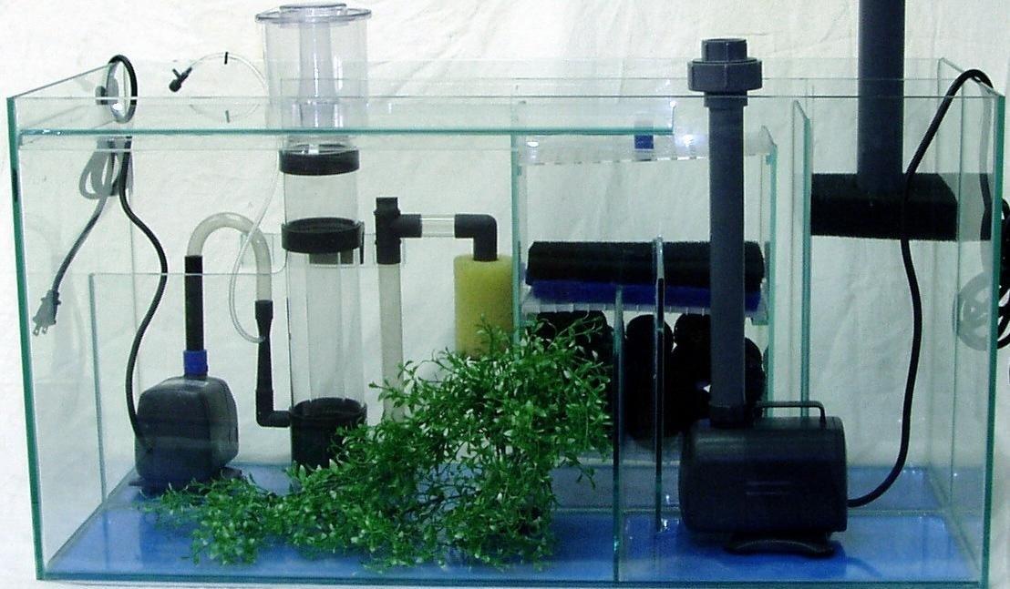Оборудование аквариума своими руками фото