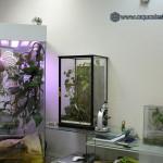 Купить инсектарий для бабочек и других насекомых в Москве.