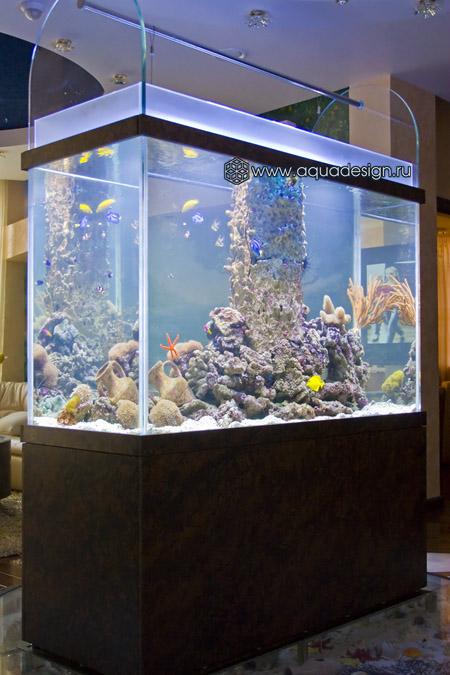 Нестандартные аквариумы и террариумы