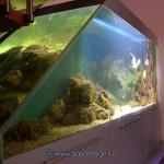 Океанический аквариум_3