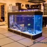 Океанический аквариум_8