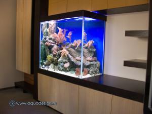 Морской аквариум встроенный