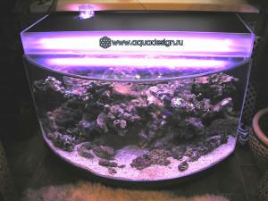 Морской аквариум под окном