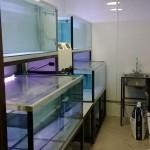 Промышленные комплексы и аквасистемы