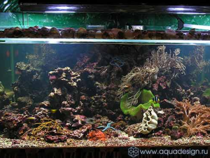 Морская аквасистема «A priori»