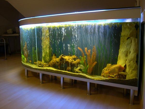 Купить аквариум барная стойка и стойки ресепшен