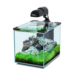 Нано-аквариум для нано-квартиры