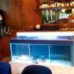 promyshlenniiy-akvarium-2