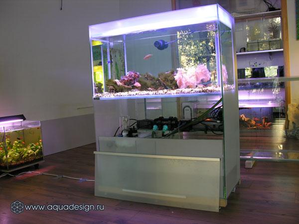 Биофильтрация в аквариуме