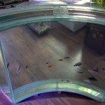 аквариум «Дуга»