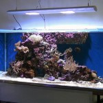 аквасистема «РИФ»